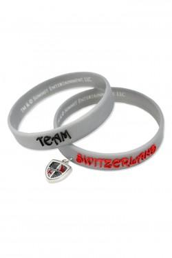 teamSwitz