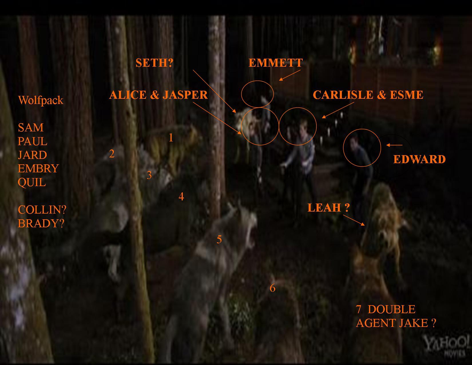 Breaking Dawn Movie Twilight Lexicon Part 5